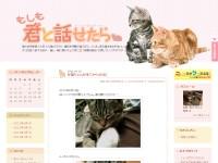 もしも君(猫)と話せたら~猫大好きブログ~